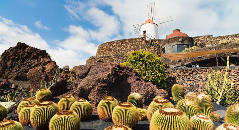 Il giardino dei Cactus nell'isola di Lanzarote
